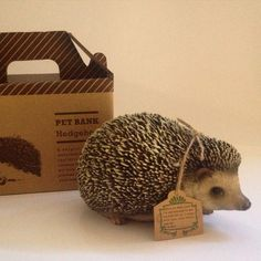 Hedgehog Pet Bank. Realistic pet with a hidden coin slot. www.oinkypigmoneyboxes.com.au