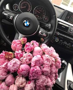 Instagram post by Flower Power • May 13, 2018 at 10:09am - Gorgeous Mother's Day Flowers 💗 Flower Power, My Flower, Photowall Ideas, Carros Bmw, Bmw Girl, Bmw Wallpapers, Bmw Love, Flower Aesthetic, Flowers Nature
