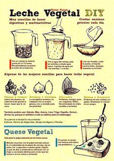 Cómo hacer leche vegetal y queso vegetal