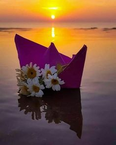 Sunset on the Lake Beautiful Flowers Wallpapers, Cute Wallpapers, Wallpaper Backgrounds, Moon Photography, Amazing Photography, Nature Pictures, Beautiful Pictures, Miniature Photography, Butterfly Wallpaper