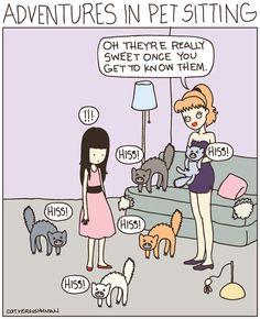 16 Best Pet Sitter & Dog Walker Funnies images in 2013 | Dogs, Pets