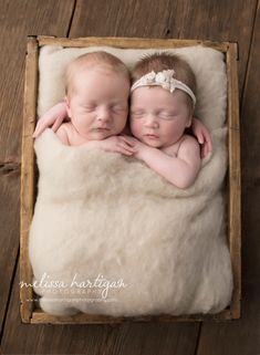 Melissa Hartigan Photography Connecticut Newborn Twin Photographer Coventry Ct Middlefield CT baby Fairfield county Newborn and maternity CT photographer Newborn twin photographer baby twins sleeping in wooden box holding hands with arms wrapped around each other with cream blanket