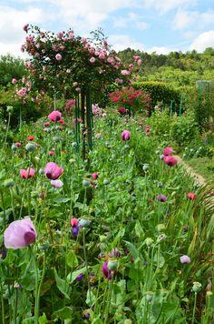 visit Monet's Garden  Photo from Scandi Foodie blog.
