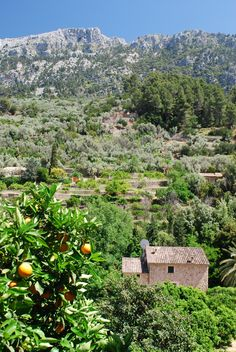 Fornalutx, Balearic Islands, Majorca_ Spain