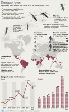 Best Information On Dengue Fever Images  Dengue Fever Mortality  Graphic Fact File On Dengue Fever Including Charts On Number Of Cases And  Deaths In High School And College Essay also Essays On Business Ethics  Help To Do My Assignmemt