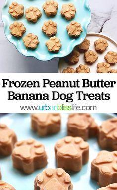 Frozen Dog Treats, Diy Dog Treats, Healthy Dog Treats, Homeade Dog Treats, Summer Dog Treats, Pumpkin Dog Treats, Puppy Treats, Dog Biscuit Recipes, Dog Treat Recipes