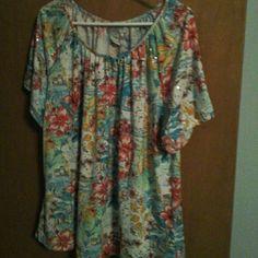 Top never worn, hung in my closet C.D.DANIELS Tops Tees - Short Sleeve