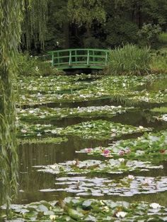 Nov 2019 - Photographic Print: Japanese Bridge and Lily Pond in the Garden of the Impressionist Painter Claude Monet, Eure, France by David Hughes :