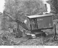Bucyrus steam shovel and construction crew, Wynooche Timber Company, probably in Grays Harbor County, ca. 1921 (Clark Kinsey photo)
