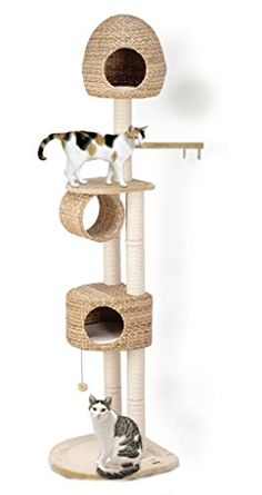 Karlie 34896 Banana Leaf VI Cat Scratching Post 68 x 57 x 229 cm Beige Karlie http://www.amazon.co.uk/dp/B001EXPM1O/ref=cm_sw_r_pi_dp_cPPdxb17WKCX8