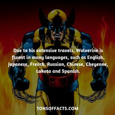 Wolverine is fluent in many languages Marvel Facts, Marvel Jokes, Marvel Vs, Marvel Dc Comics, Marvel Heroes, Cartoon Books, Comic Books, Superhero Facts, Ghost Rider Marvel