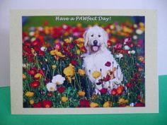 Blank greeting card Unique handmade dog lover card -Happy Birthday - Irish wolfhound flowers