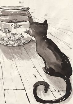 the cat and the fish