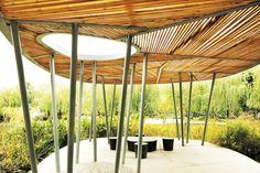 Cicada Landscape Architecture Singapore / photo by Patrick Bingham-Hall