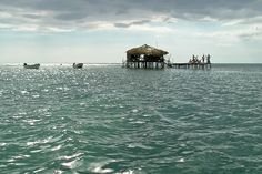 Uncommon Attraction: Floyd's Pelican Bar in the Sea, Jamaica....awesone