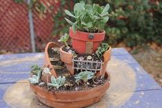 Picture of Fairy Garden