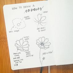 33 Best Flowers how to images in 2018 | Flower doodles, Drawing