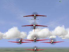 "aerobatics team ""Fighting Woodpeckers"