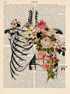 Lungs Flowers / Medical Illustration Print Upcycled Anatomy Print ...