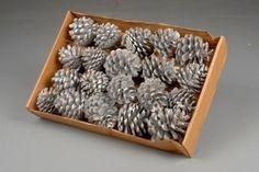Pine cone zilver glitter op draad https://www.bissfloral.nl/blog/2014/12/05/pine-cone-zilver-glitter-op-draad/