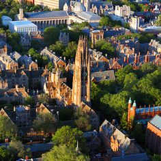 Yale University - Connecticut