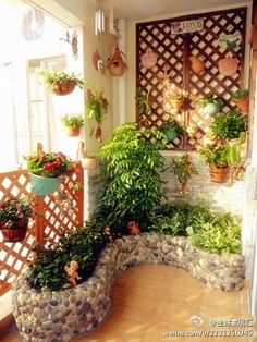 green balcony ideas