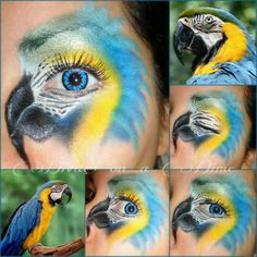 bird idea.. tropical theme parties, animals
