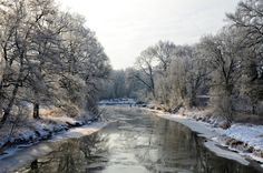 The river in winter Dessau, Germany