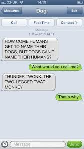 dog texts - Google Search