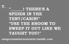 teamwork: shovel and broom :)