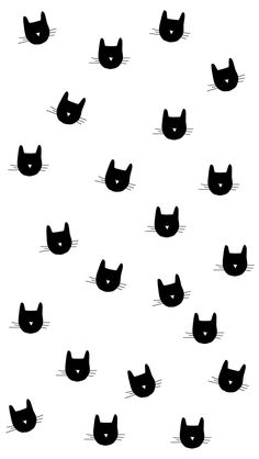 Black white cat kitty faces phone iphone wallpaper background lock screen