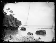 Avatele, Niue photographed by Thomas Andrew c.1886 - Collections Online - Museum of New Zealand Te Papa Tongarewa