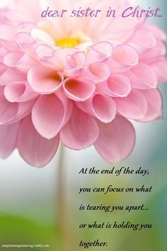 good morning dear sister in Christ... More at http://ibibleverses.christianpost.com
