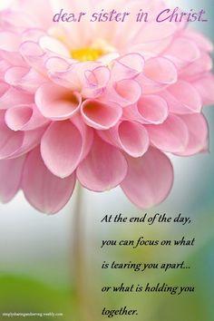 good morning dear sister in Christ... http://pinterest.com/faithfilledinfl/dear-sister-in-christ/