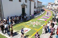 Festa do corpo de deus caminha, Portugal