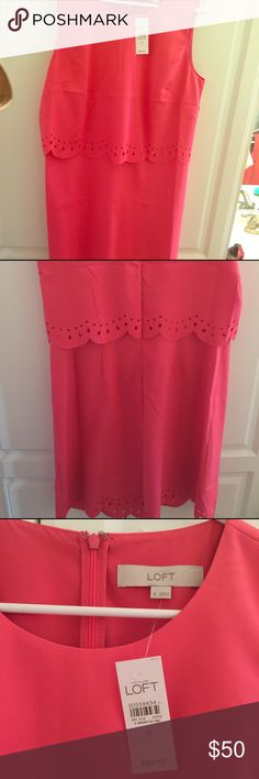 Women's LOFT dress, brand new never warn. Size 8, layered Loft dress! Pink/tangerine color. LOFT Dresses Midi
