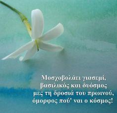Η ζωή είναι πάντα άνοιξη... Όλα τα λουλούδια ανοίγουν για όλους!!!