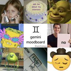Gemini Traits, Gemini And Aquarius, Gemini Life, Zodiac Sign Traits, Zodiac Signs Astrology, Zodiac Memes, Gemini Zodiac, My Zodiac Sign, Gemini Quotes