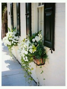window box is a neutral 3rd color (would this work well on anything but a white house?) (terra cotta might look fine on light brick)