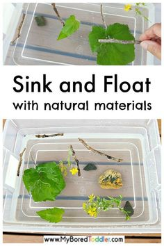 , Sink and float toddler activity with materials from nature - an easy water play . , Sink and float toddler activity with materials from nature - an easy water play activity for toddlers and preschoolers - sinki or float - math and sci. Science Activities For Toddlers, Water Play Activities, Nature Activities, Stem Activities, Play Activity, Water Games, Indoor Activities, Outside Activities For Kids, Summer Activities