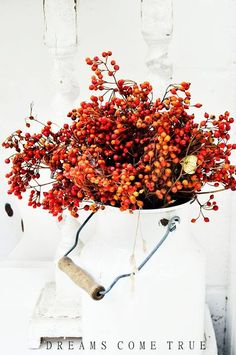 Beautiful berries as an autumn bouquet in a simple milk jug. Beautiful berries as an autumn bouquet in a simple milk jug. Fall Home Decor, Autumn Home, Holiday Decor, Fall Bouquets, Autumn Decorating, Decorating Ideas, Happy Fall Y'all, Decoration Table, Decorations
