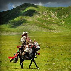 Tibet #tibet #igtibet_family