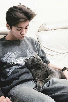 Luhan: Dime que no es cierto ! Chanyeol Baekhyun, Park Chanyeol, Exo Exo, Cat City, City Kitty, Anime Galaxy, Pose Reference Photo, Boys Life, Music Mood
