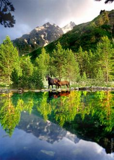 Russia Travel Packages - Specialists in Outstanding Russia Tours Places To Travel, Places To See, Mount Elbrus, Beautiful World, Beautiful Places, Places Around The World, Belle Photo, Amazing Nature, Wonders Of The World