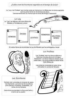 Fichas para conocer los Evangelios jugando:                         Colorea y aprende los libros que componen el Anti...