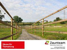 #Zaunteam #Zäune und Tore für die Tierhaltung