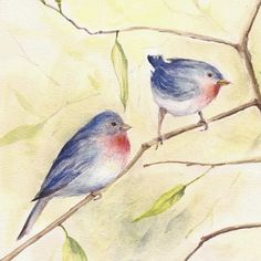 Watercolor blue bird art