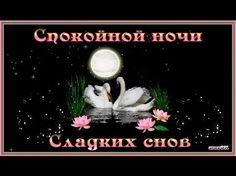 Пожелания #Спокойной Ночи! - YouTube