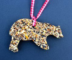 DIY on how to make bird food pendants with cookie cutters.