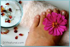 Ultra-Moisturizing Foot Cream  ¾ cup coconut oil  ½ cup shea butter  15 drops lavender essential oil – you can use any essential oil you wish, or a combination like lavender/mint or lavender/tea tree to further combat fungal issues